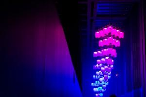 第20回釜山国際映画祭,ピンクとグレー
